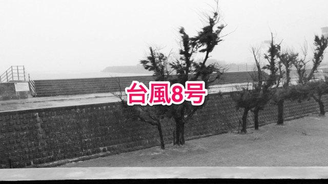 01_20140708_typhoon8